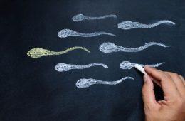 Hamile Kalmak İçin İdeal Sperm Sayısı Ne Kadar Olmalı?